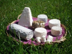 plateau fromages chevres